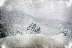 冬天风景葡萄酒照片与多雪的冷杉木的 免版税库存图片