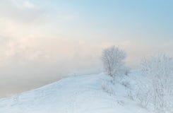 冬天风景雪 免版税库存照片