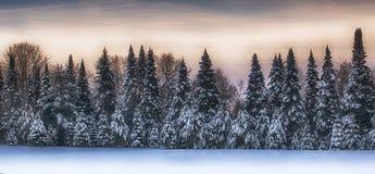 冬天风景风景 库存图片