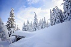 冬天风景,在山的积雪的树 Karkonosze,波兰 库存照片