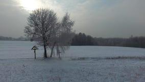 冬天风景,在领域的十字架,鸟瞰图 股票视频