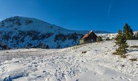 冬天风景,奥地利 库存照片