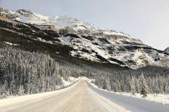 冬天风景,落矶山,亚伯大,加拿大 免版税库存图片