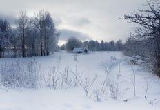 冬天风景, 12月晚上 库存图片
