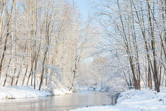 冬天风景:的小河多雪的森林 免版税图库摄影