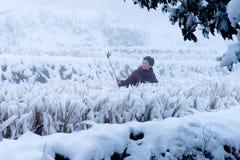 冬天风景:Selfie妇女 免版税库存图片