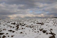 冬天风景-用第一下落的雪包括的耕地在一个晴天 免版税库存照片