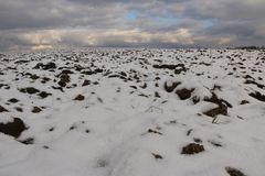 冬天风景-用第一下落的雪包括的耕地在一个晴天 库存照片