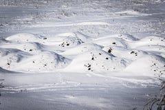 冬天风景-雪沙丘 免版税库存照片