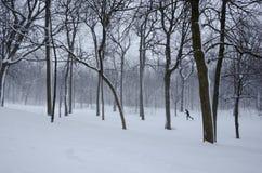 冬天风景 图库摄影