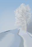 冬天风景 皇族释放例证