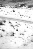 冬天风景9 免版税库存图片