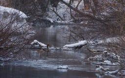 冬天风景 免版税库存图片