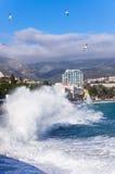 冬天风暴在黑海 免版税库存照片
