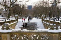 冬天飞雪在中央公园,纽约 库存照片