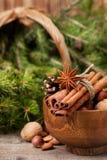 冬天香料和成份烹调的 免版税图库摄影