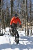 冬天骑自行车 库存照片
