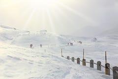 冬天,与远足者的山多雪的风景 免版税库存图片