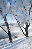 冬天,冬天,冬天 库存图片