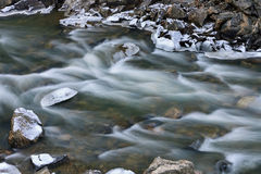 冬天,清楚的小河 免版税库存图片