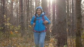 冬天,秋天旅行和远足的概念 步行外面在秋天森林里的年轻徒步旅行者妇女 影视素材