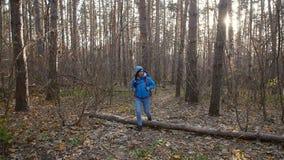 冬天,秋天旅行和远足的概念 步行外面在秋天森林里的年轻徒步旅行者妇女 股票视频