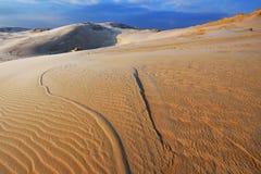 冬天,银色湖沙丘 免版税图库摄影