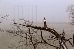 冬天,雪场面,结冰的湖,著名风景区 免版税库存图片