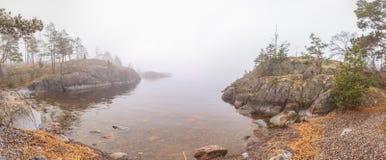 冬天,冻湖的海岸。 免版税库存照片