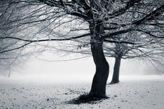 冬天-与转弯 库存照片