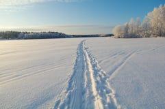 冬天结冰的湖 免版税库存照片