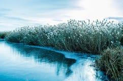 冬天结冰的水起点  免版税库存图片