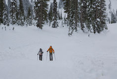 冬天活动 Mt更加多雨的NP, WA美国- 2016年1月, 3d 库存照片