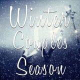 冬天结合季节诱导行情 免版税库存图片