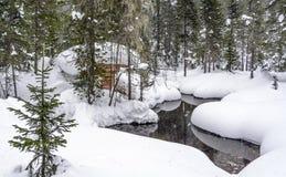 冬天 在小河附近的北方针叶林小屋 免版税库存图片