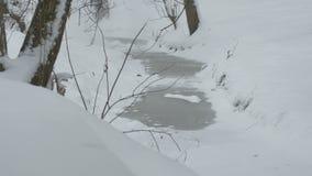 冻冬天水小河 股票视频