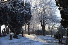 冬天1905希望之光 库存照片