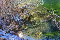 冬天离开雪冰摘要Wenatchee河华盛顿 库存照片