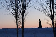 冬天阴影 库存图片