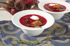 冬天维生素与红色甜菜根的奶油汤 图库摄影
