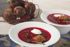 冬天维生素与红色甜菜根的奶油汤 库存照片