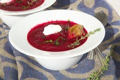 冬天维生素奶油汤用红色甜菜根 免版税库存照片
