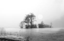 冬天-由湖的有雾的天 免版税图库摄影