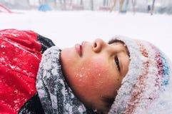 冬天画象 库存照片