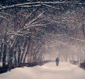 冬天 降雪在城市 库存图片