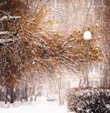 冬天 降雪在城市 免版税库存照片