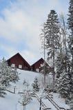 冬天滑雪瑞士山中的牧人小屋,多雪的风景,与拷贝空间的冬天背景 免版税库存图片