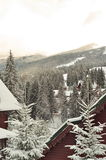 冬天滑雪瑞士山中的牧人小屋,多雪的风景,与拷贝空间的冬天背景 库存照片