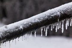 冬天34 免版税库存照片