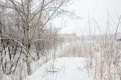 冬天` s传说 冬天小河在多雪的森林里 免版税库存照片